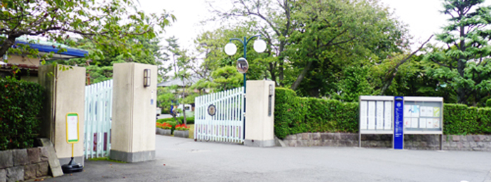 university008.jpg